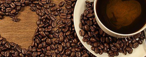 The Best Mexican Coffee In Puerto Vallarta