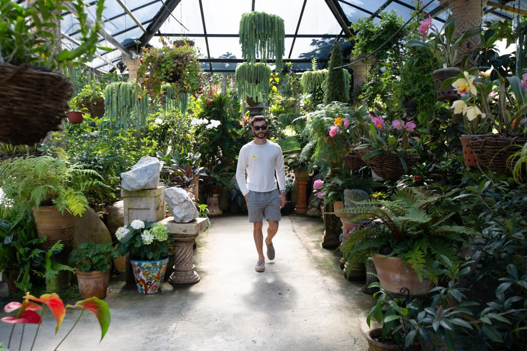 Awesome Things To Do In Puerto Vallarta-Botanical Gardens