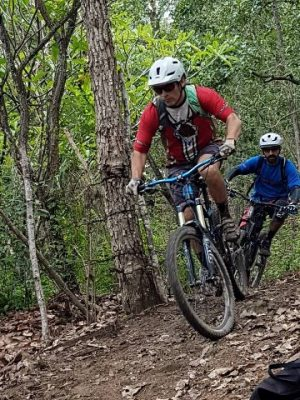 mountain bike riders on a trail