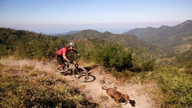 a bike rider and a dog running down a dusty mountain trail