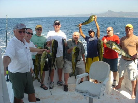 eight sport fishermen on the stern of a boat holding their catches of dorado fish in puerto vallarta.