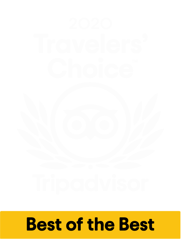 2020 Traveler's Choice Award